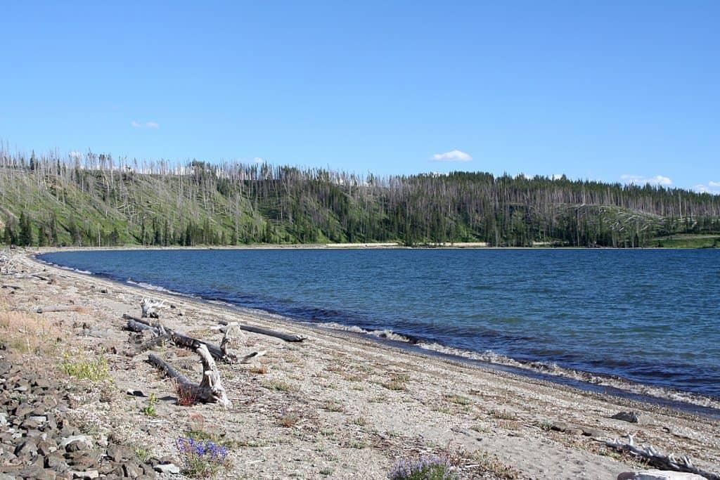 lake-yellowstone