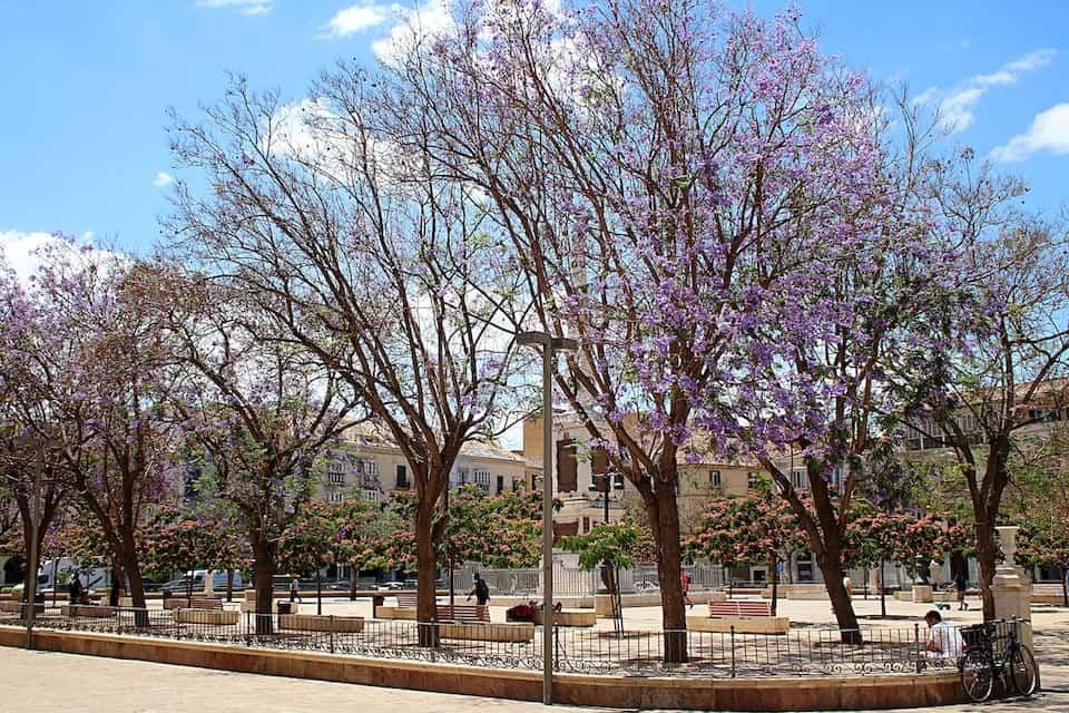 Przewodnik po Maladze - Plaza de la Merced.