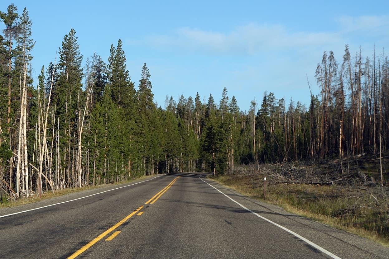 Z naturą za pan brat, czyli 2 dni w Yellowstone